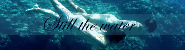 stillthewaterbanner