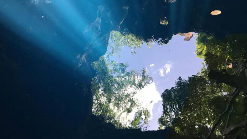 Cenote (2019) by Kaori Oda